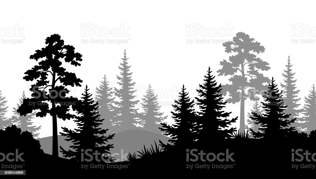 Fondo sin costuras, siluetas de bosque de verano - ilustración de arte vectorial