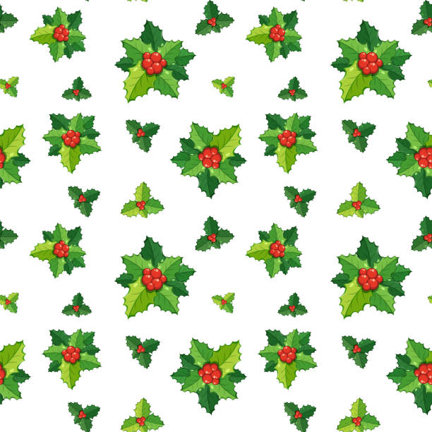 Pictures Of Mistletoes Illustrations Royalty Free Vector Graphics