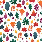 Seamless background with autumn leaf pattern. Fall herb, twig on white background.  Oak and maple leaf graient color. Vector