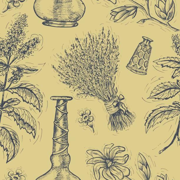 bildbanksillustrationer, clip art samt tecknat material och ikoner med sömlös bakgrund med lavendel, patchouli, magnolia och parfym flaskor - lavender engraving