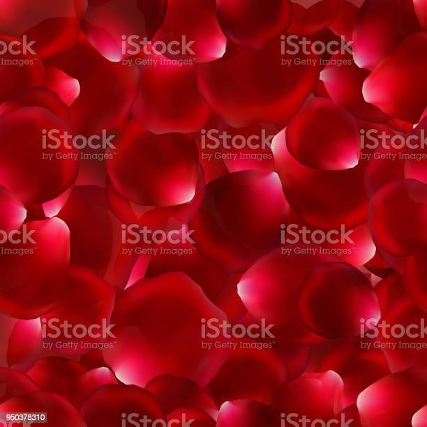 Seamless background with rose petals vector id950378310?b=1&k=6&m=950378310&s=612x612&h=ssc6xgj fyfhteo 1igmvmdmpvo6liylyxsiwnxnktm=