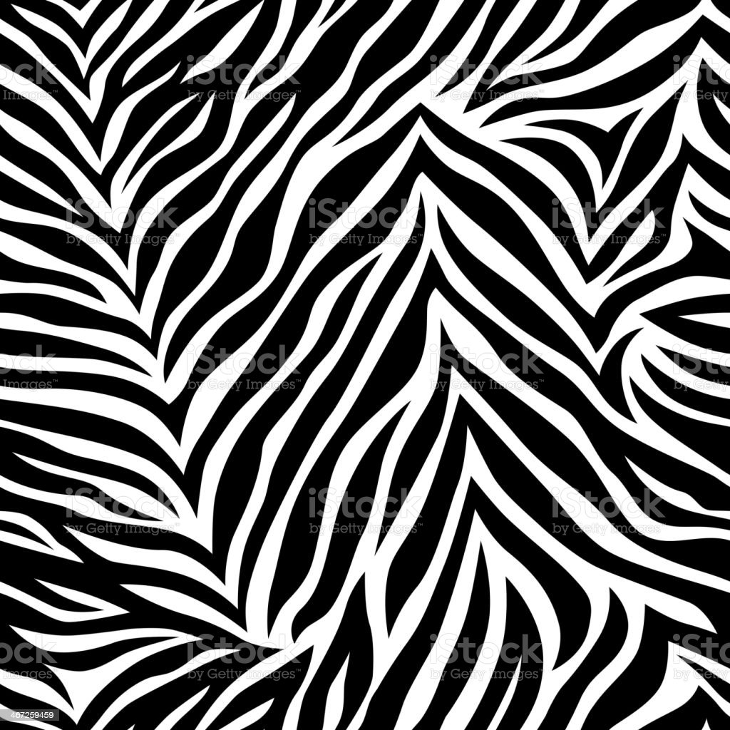 Seamless background zebra pattern in black and white royalty-free stock vector art