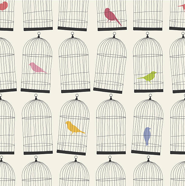 illustrations, cliparts, dessins animés et icônes de sans couture papier peint coloré se compose de cages oiseaux et motif - dessin cage a oiseaux