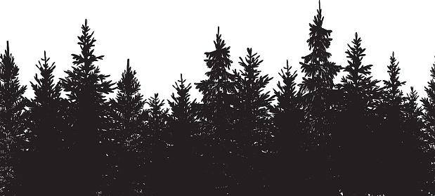 Vector illustration of hand drawn black tree background.
