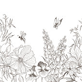 Herbs and wild flowers poppy, jasmine, bee, butterfly. Botanical Illustration engraving style. High detailed hand drawing