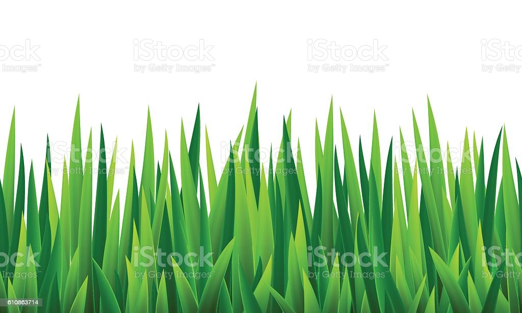 Seamless border with grass and flowers vector art illustration