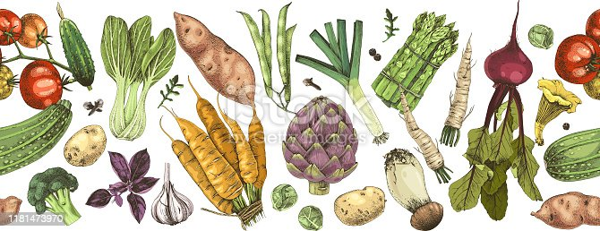 Seamless border with colorful hand drawn vegetables. Vector illustration