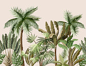 Seamless border with tropical tree such as palm, banana. Vector.