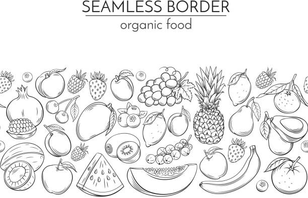 Seamless borders with hand drawn fruits Seamless borders with hand drawn fruits for farmers market menu design. Vector vintage illustration. banana borders stock illustrations
