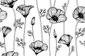 Seamless California poppy flower pattern background. Black and white with drawing line art illustration.