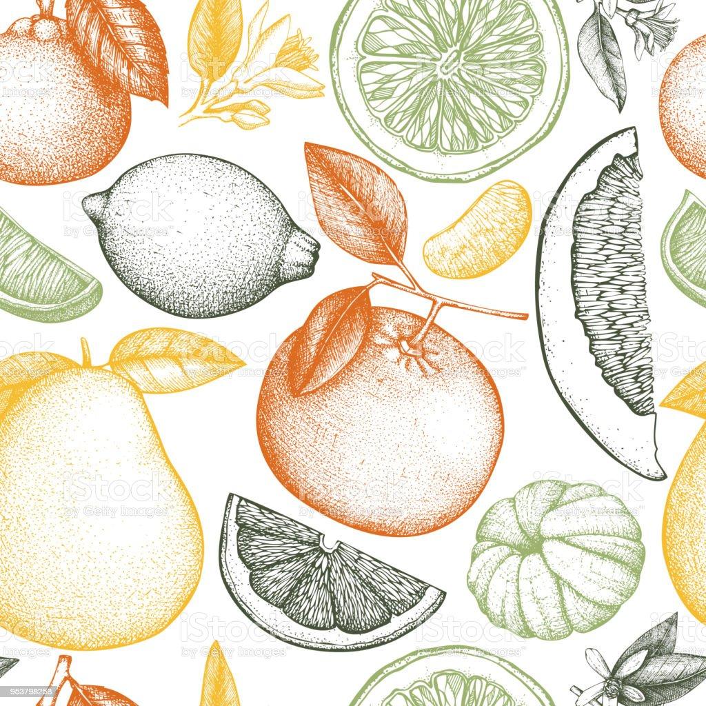 Nahtlose Zitrusfrüchte Muster – Vektorgrafik