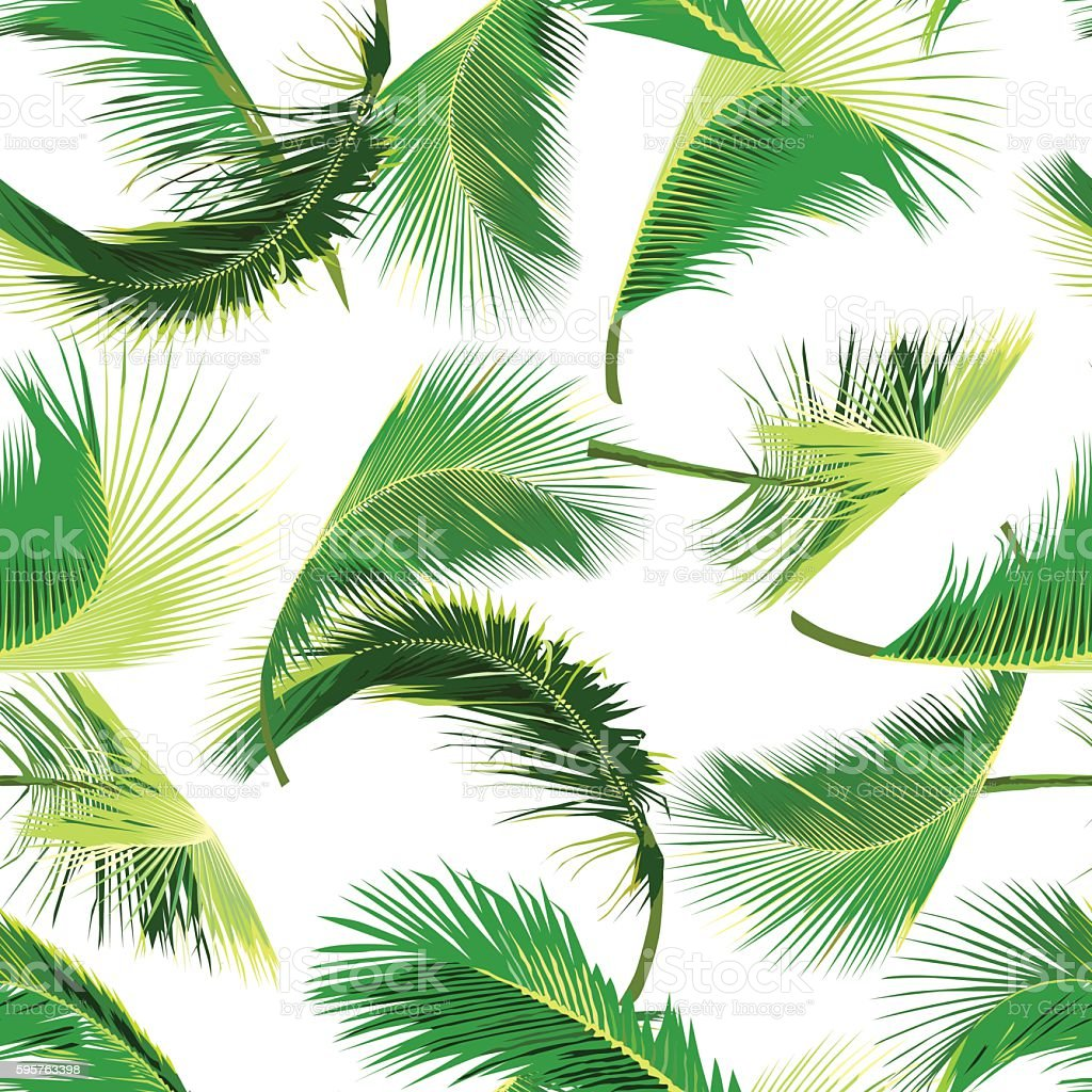 seamless coconut tree leaves pattern palm leaves vector illustration