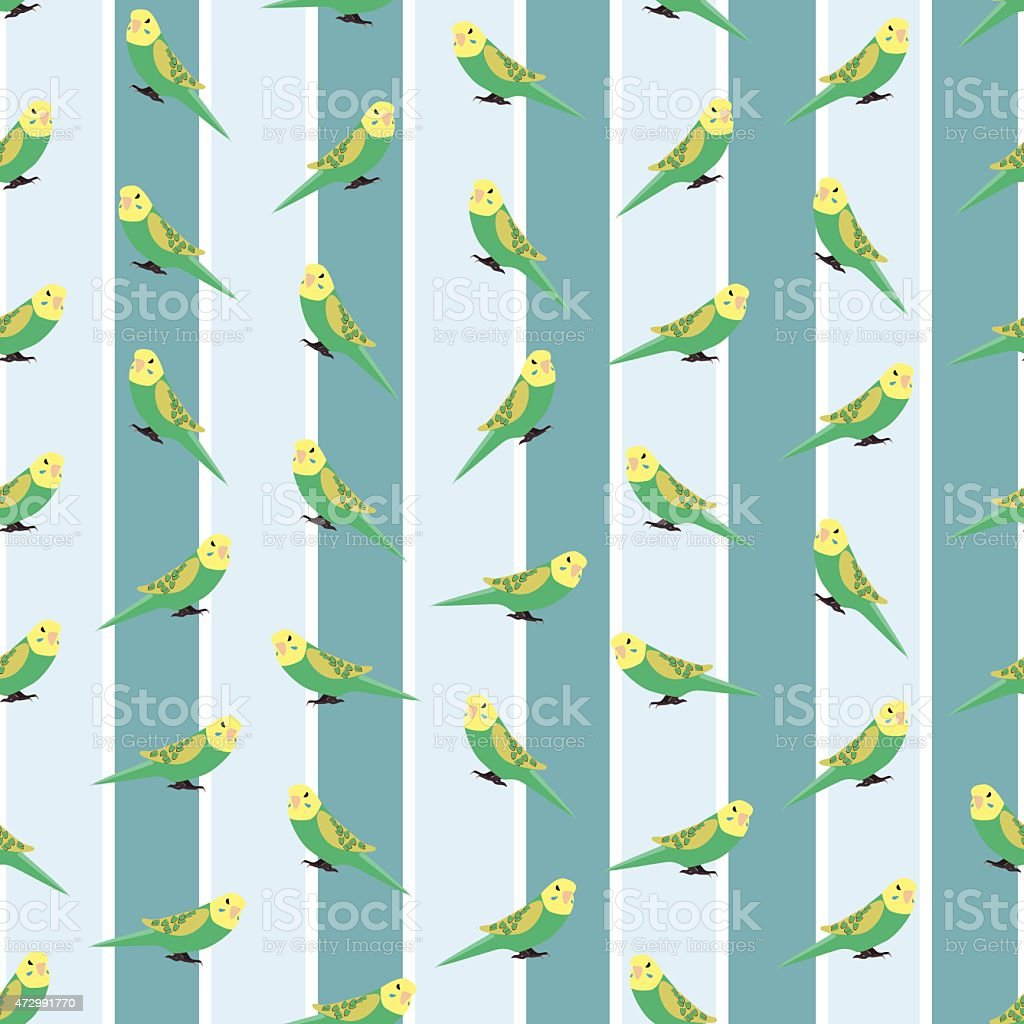 Seamless colorful background made of budgies  in flat design vector art illustration