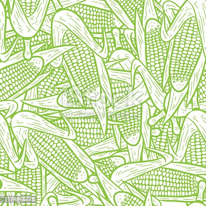 seamless corn pattern vector, hand drawing
