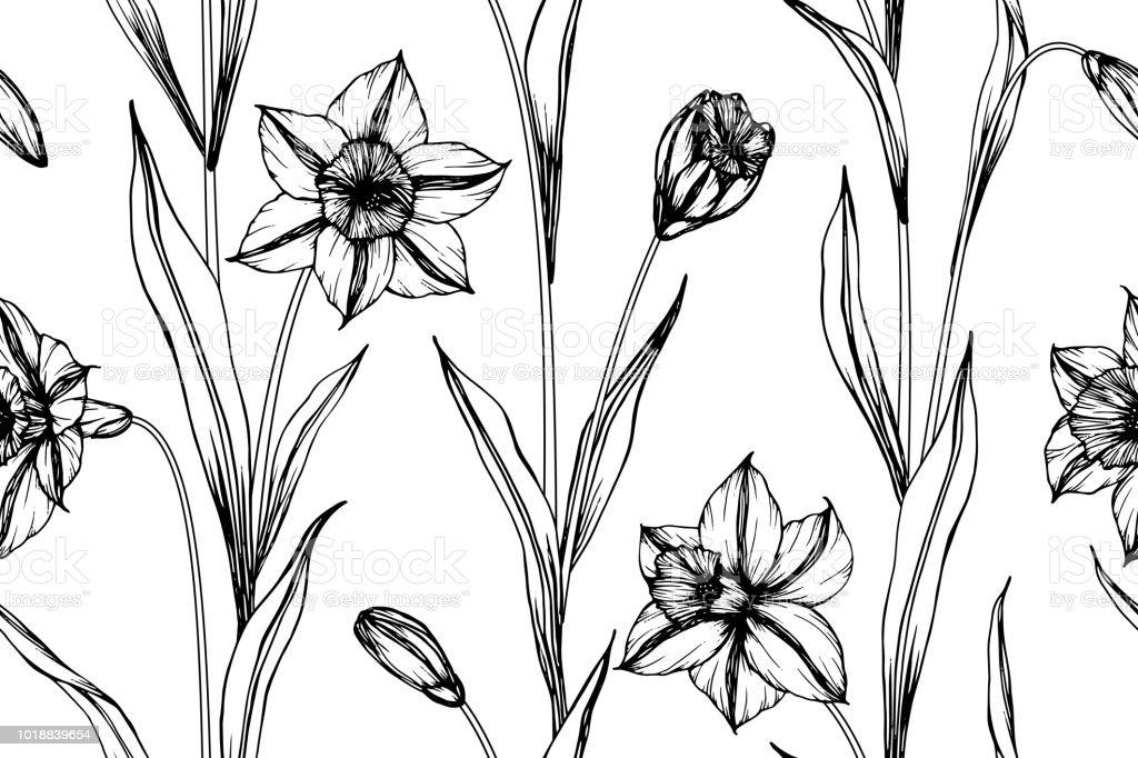 Nahtlose Narzisse Blumen Muster Hintergrund Schwarz Und Weiß Mit Dem