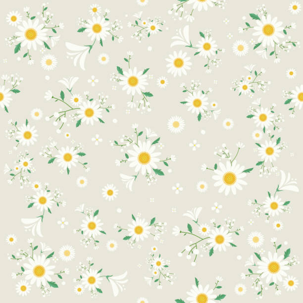 Seamless daisy floral pattern, Beautiful daisy floral, bloomy plant grass decor, illustration - Vector Seamless flower pattern, background,book cover, print,wallpaper daisy stock illustrations
