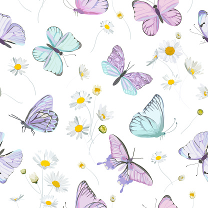 Seamless daisy flowers and butterfly vector background. Spring floral watercolor pattern. Summer beautiful textile, rustic wallpaper, camomile illustration, garden fabric, wrapping paper design