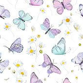istock Seamless daisy flowers and butterfly vector background. Spring floral watercolor pattern. Summer beautiful textile, rustic wallpaper, camomile illustration, garden fabric, wrapping paper design 1300049543