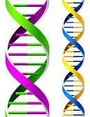 Seamless DNA Strands