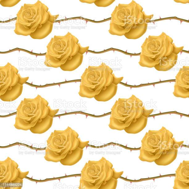 Seamless endless pattern with roses and thorns bright yellow roses on vector id1144885224?b=1&k=6&m=1144885224&s=612x612&h=dkoyzixwmou8nahj6gkbvuwld6lvh3s8dgntmblhk y=