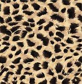 http://i1090.photobucket.com/albums/i369/v0lha/patterns_zps1f71694a.jpg