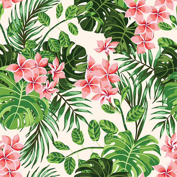 Seamless exotic pattern. Seamless exotic pattern with tropical leaves and flowers. Vector illustration. frangipani stock illustrations