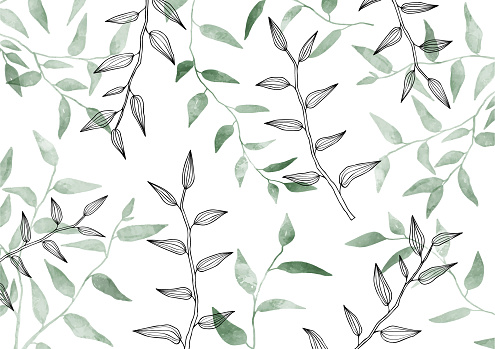Seamless exotic pattern with leaves. Watercolor, Line drawing. Hand drawn style. Herbal, Greenery, leaf. Modern neutral Vector illustration. Background. Poster, Card.