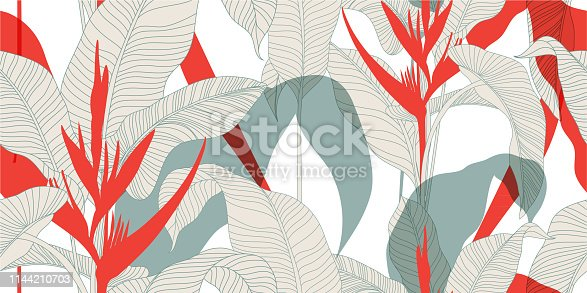 Exotic leaves with red Heliconia flowers on a light background. Vector illustration