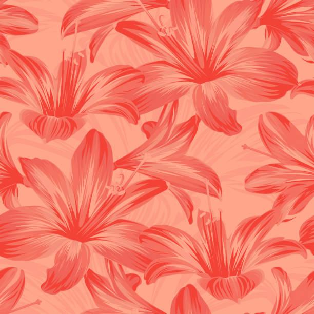 bildbanksillustrationer, clip art samt tecknat material och ikoner med sömlös blom mönster med korall blommor-hippeastrum eller amaryllis på rosa bakgrund. - amaryllis
