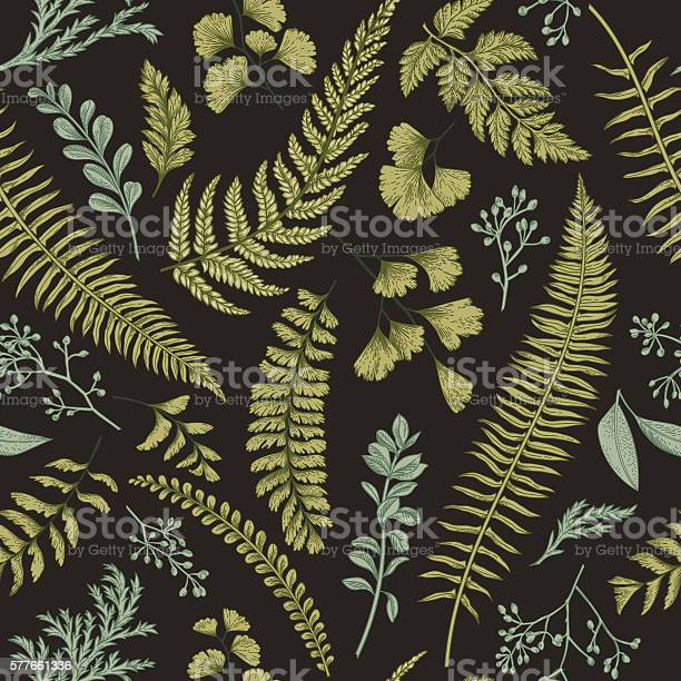 Seamless floral pattern with herbs and leaves vector id577661336?b=1&k=6&m=577661336&s=612x612&h=hu13 tl92qaoofs3kd kcagwgv6r9sedquay1d9fo4w=
