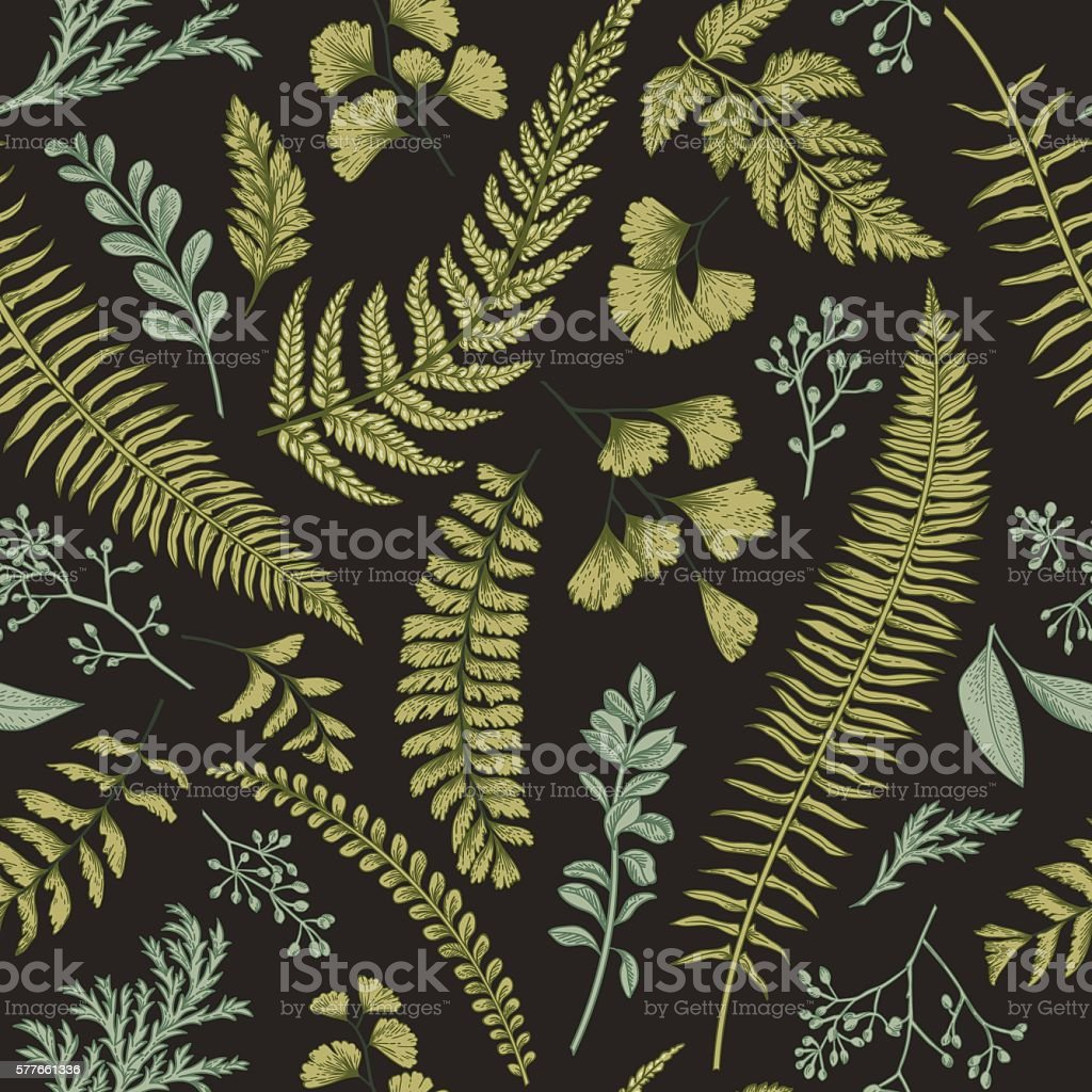 Seamless floral pattern with herbs and leaves. – Vektorgrafik
