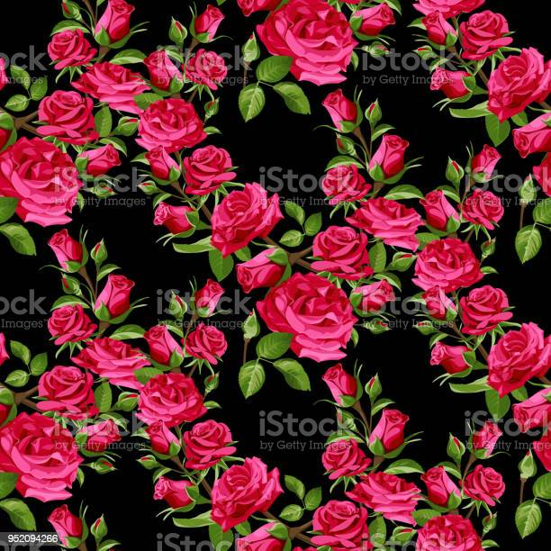 Seamless floral pattern with pink roses on a black background vector id952094266?b=1&k=6&m=952094266&s=612x612&h=adz gfounkytz8vtkl0bdybkeycpnqabwkeogu eyvs=