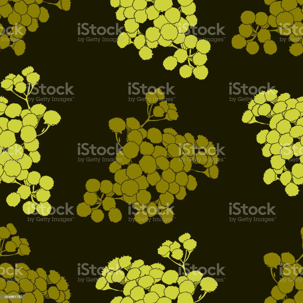 Seamless floral pattern with tansy royalty-free stock vector art