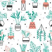 Home plants in bright flowerpots. Modern geometeric pattern.