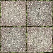 seamless garden tiles background