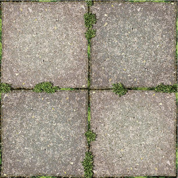 stockillustraties, clipart, cartoons en iconen met seamless garden tiles  with moss background - stoep