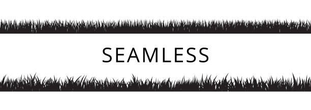 seamless grass borders silhouettes set. isolated vector illustration. - grass stock illustrations