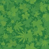 Seamless leaf wallpaper. Pattern will tile endlessly. Eps 10 using transparencies.