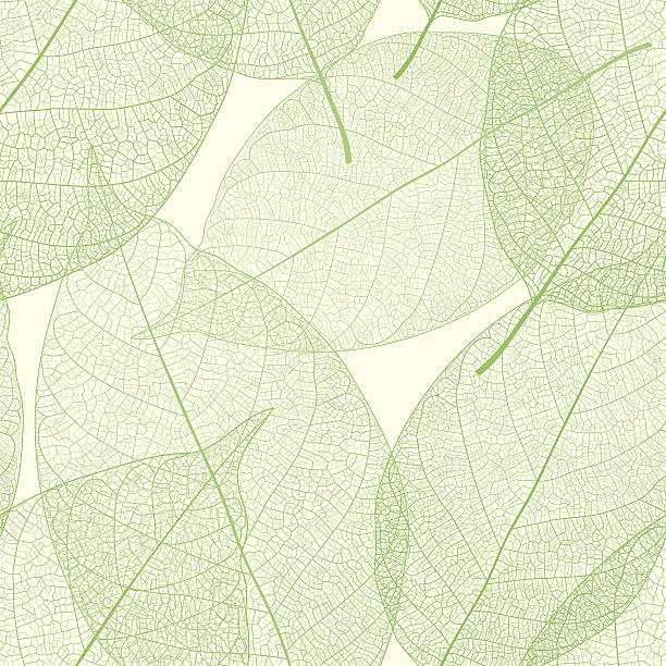 seamless green leaves pattern - organic stock illustrations, clip art, cartoons, & icons