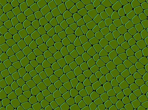 seamless  green   squama   pattern