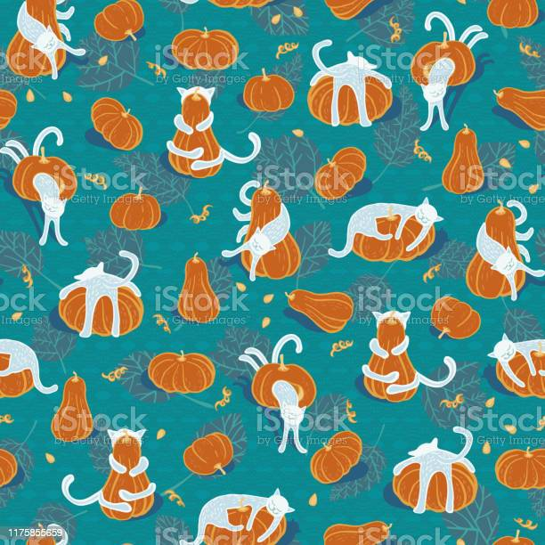 Seamless halloween vector pattern with pumpkins and funny cats on vector id1175855659?b=1&k=6&m=1175855659&s=612x612&h=ufyxudxebim9p ztk7lklidwomjm0x1c8se11uywbby=