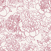 Vector seamless hand drawn floral pattern with bouquets of outline burgundy peony flowers on pink background