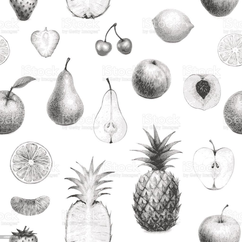seamless hand drawn fruits set vector art illustration