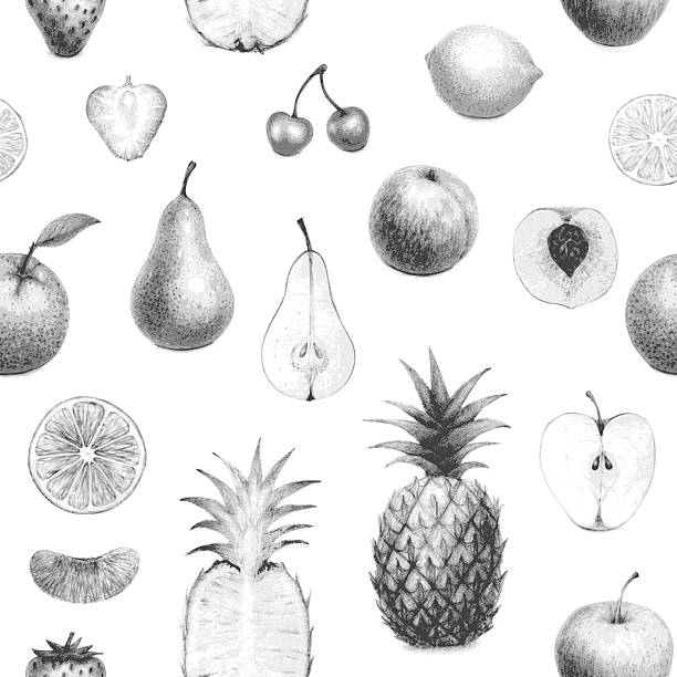 seamless hand drawn fruits set vector art illustration