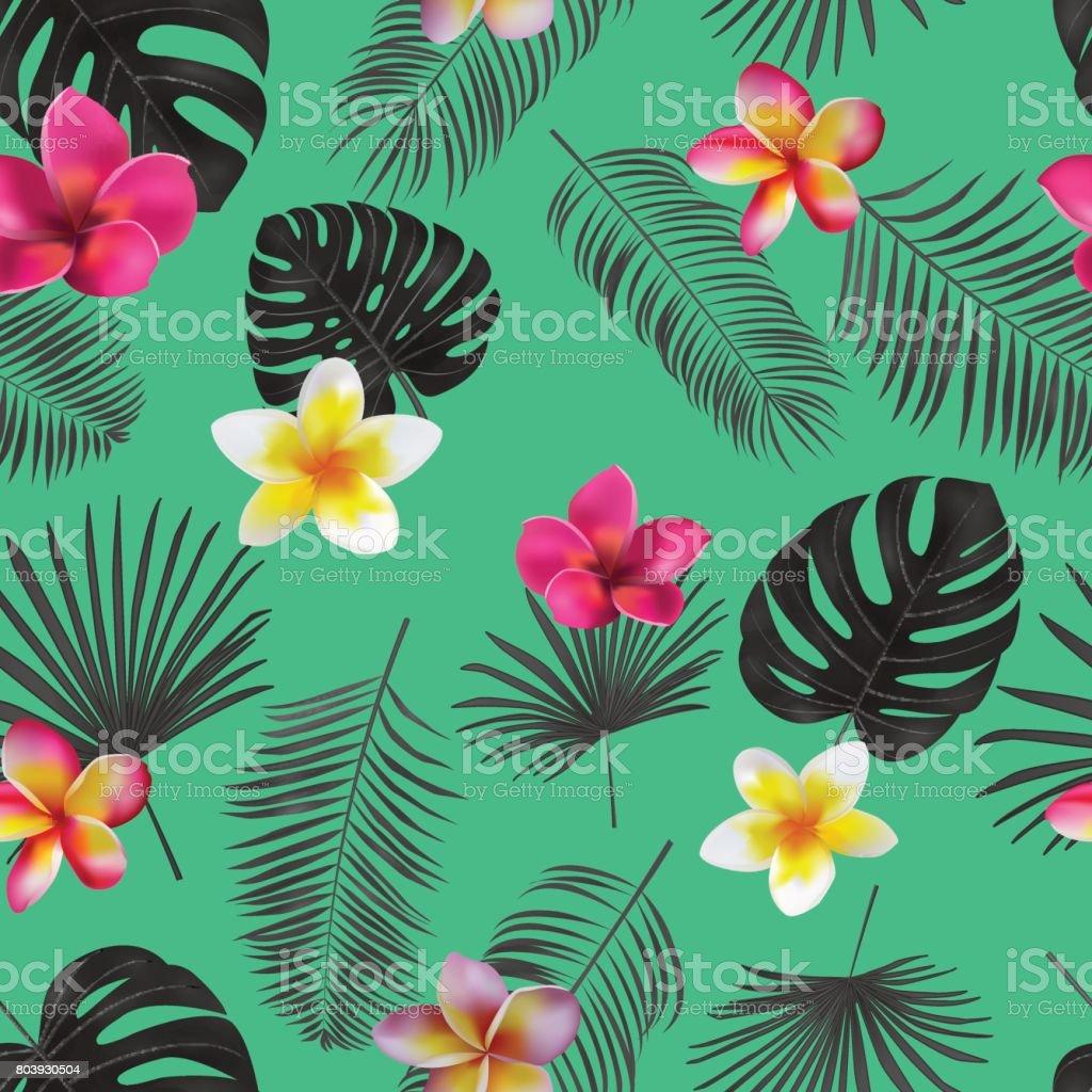 Ilustración de Mano Transparente Dibujada Patrón Vector Tropical ...