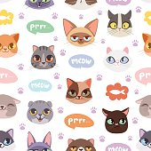 Seamless hipster cats pattern vector illustration. Cute animal heads funny decorative background. Color abstract feline domestic trendy drawn wallpaper.