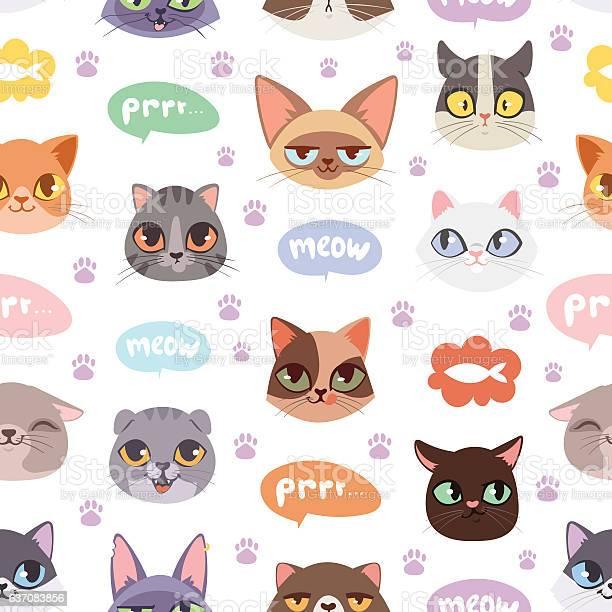 Seamless hipster cats pattern background vector illustration vector id637083856?b=1&k=6&m=637083856&s=612x612&h=kty2djbdd wlskrthz4hz5vb22wjdpa8m0emtcxkmcu=