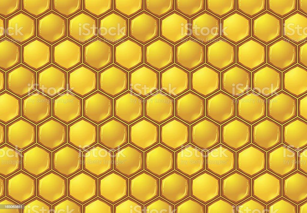 Seamless honeycomb pattern royalty-free seamless honeycomb pattern stock vector art & more images of animal markings