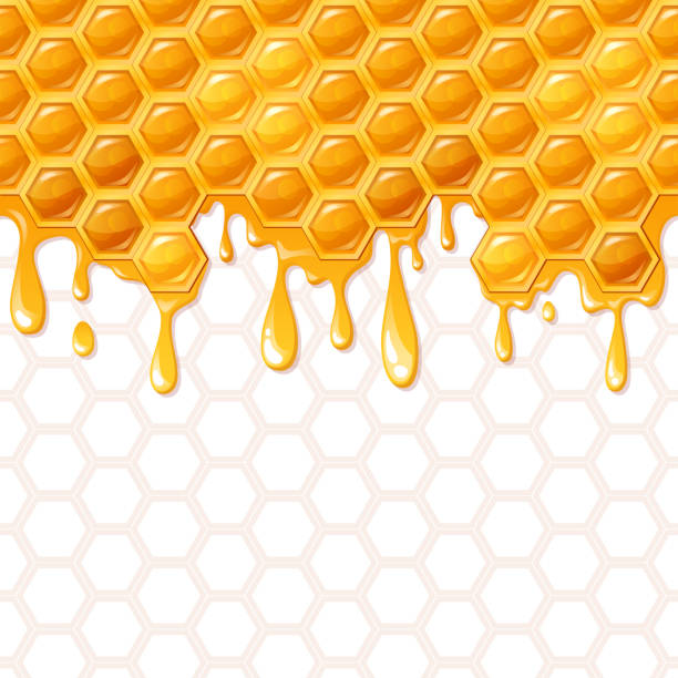 seamless honeycomb pattern with flowing honey - honey drip stock illustrations, clip art, cartoons, & icons