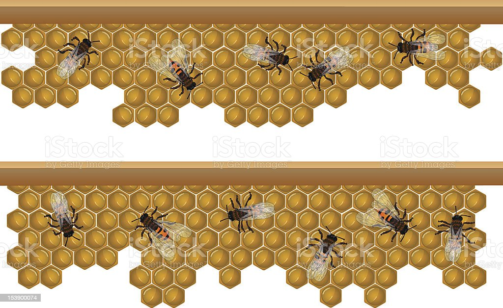 Seamless honeycomb royalty-free seamless honeycomb stock vector art & more images of abstract
